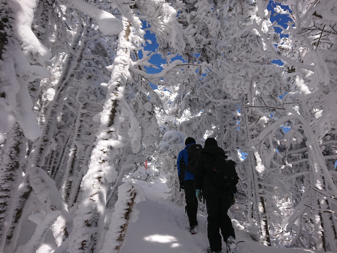 黒斑山スノーハイク